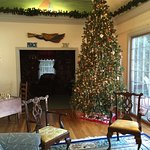 From one of many Christmas stays - The living room tree.