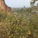 Camelback Mountain Foto