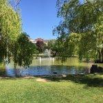 Zona del estanque