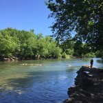 Barton Springs Pool Foto