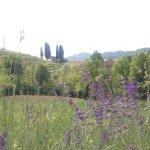 Photo de Oasi di Galbusera Bianca - Agriturismo Bio di Charme