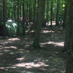 Yogi Bear's Jellystone Park Camp-Resort Luray