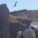 Crazy kids jumping into Copper Canyon