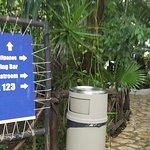 Tukan hotel,  beach club, and fifth avenue