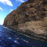 Snorkeling the back side of Molokini -- an amazing experience.