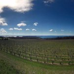 Wine Country.
