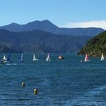 nearby Picton Harbor where you can catch whale-watching tours, kayak, sail or just relax.