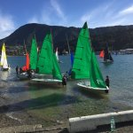 The local school sailing teams practicing for their regatta