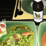 Fish fillet with green curry topping and beef Penang