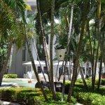 Photo de Grand Cayman Marriott Beach Resort