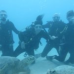 Second dive of the day Turtle Canyon.