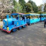 Showa Park tram-train