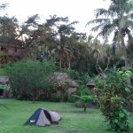 Photo of Yasur Camping Ground and Tree House