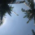Photo de Sand Sea Resort