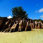 Curieuse Island Foto