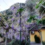 Photo de Bleu Village
