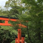 Photo of Tamatsushima Shrine