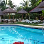 Photo of Dolphin-House Resort-SPA-Diving