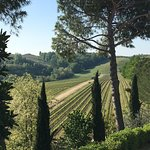 Photo de Poderi Arcangelo Agriturismo Farmhouse