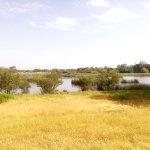 Photo of Parque Nacional de Donana