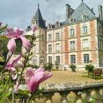 fleurs et le château