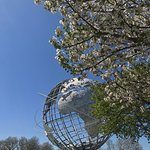 Cherry Blossoms at the Unisphere