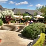 Vineyard Garden and Ornamental Pool!