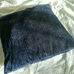 Dusty dusty cushion