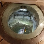 the fish pond in the basement