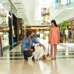 Shopping é dog friendly, está aberto aos pets de porte pequeno e médio.