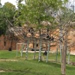 Lisbon Zoo Foto
