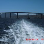 Photo of Tasman Bridge