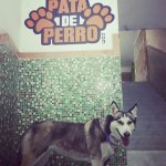 Photo of Hostal Pata de Perro