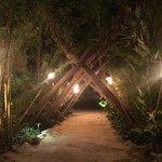 Cheeca Lodge & Spa Foto