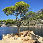 Foto de Villa pod borom