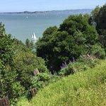 views of San Francisco Bay