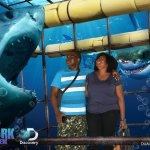 Picture taken at the Aquarium