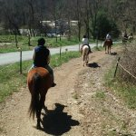 Mountain Creek Riding Stables Photo