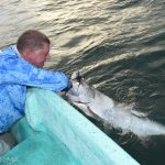 My first Tarpon, and my arms were sore...