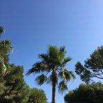 Foto de IBEROSTAR Alcudia Park
