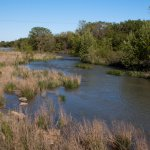 The Guadalupe River that runs through LBJ's ranch