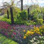 Foto di St. James's Park