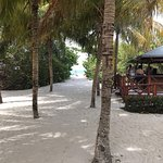 IBEROSTAR Playa Alameda Hotel Foto