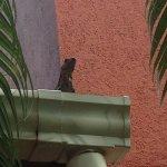 Hotel La Puerta del Sol Resmi