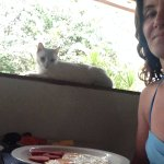 Blanca the cat overseeing breakfast