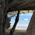 Cabinas Diversion Tropical Foto
