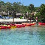 Plenty of Kayaks
