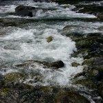 Photo of Rio Correntoso