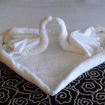 Photo de Amora Hotel Wellington