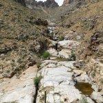 Photo of Sabino Canyon